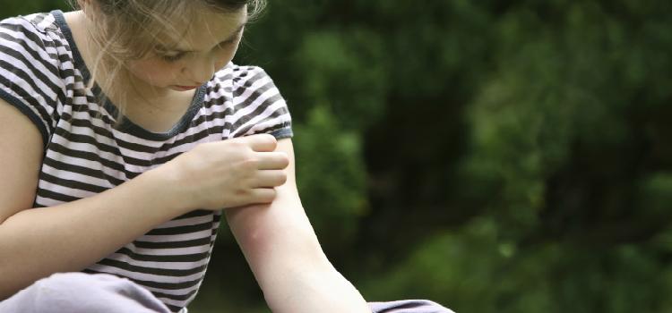 5 μύθοι για τα κουνούπια καταρρίπτονται